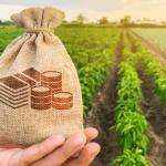 खुदरा और कृषि क्षेत्र के लोन की मांग में आया सुधार, इतनी बढ़ोतरी की गई दर्ज़