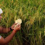 गैर-खाद्य बैंक लोन जून में 5.9% बढ़ा, मध्यम उद्योगों को दिए गए लोन में बंपर बढ़त