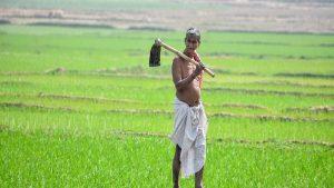 PM Kisan 9th installment news: खुशखबरी! इस तारीख को किसानों के खातों में आएगी नौवीं किस्त